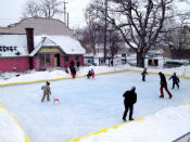 cherry rink picture